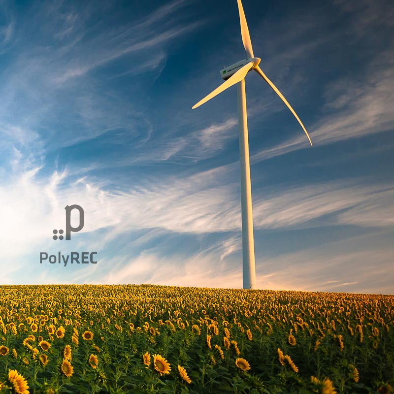 nuestra vision polyrec